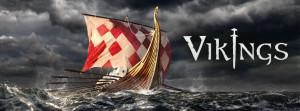 Vikings Field Museum
