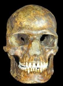 ancientDNA