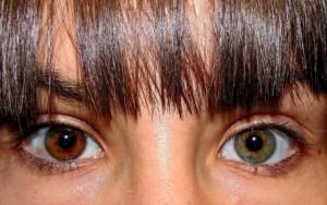 Genetic eye color