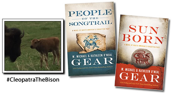Gear Books Spring Newsletter 2016