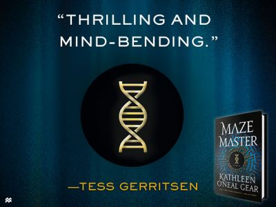 Maze Master Review Terry Gerritsen